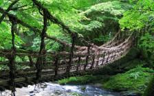 大自然に癒される四国の絶景16選