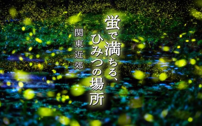 花火大会に飽きたカップルに!関東で「ホタル」が見られるスポット10選