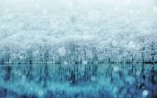日本国内で見られるウユニ塩湖6選!絶景は意外と近くにありました