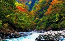 新潟観光で行きたいおすすめ絶景スポット7選