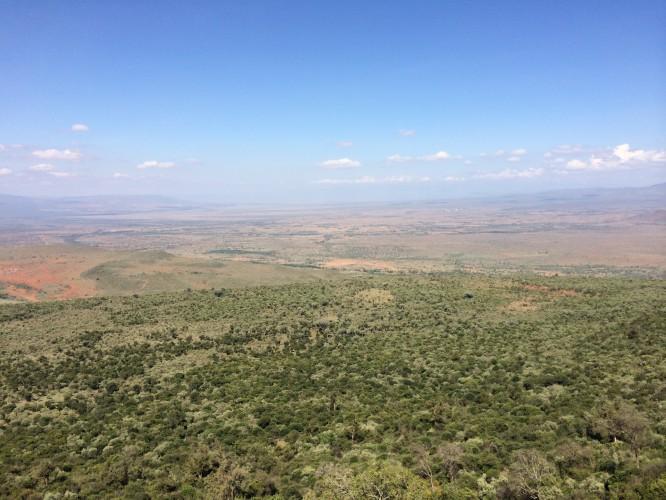 ケニア・マサイマラ国立保護区の行き方