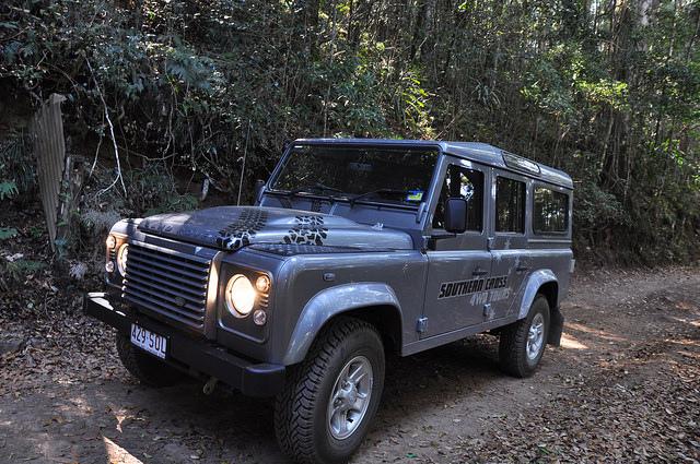 熱帯雨林2