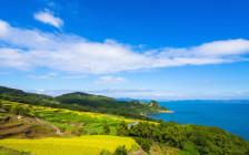 アートと自然が共生する「豊島」のおすすめ観光スポット15選