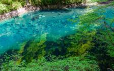 神奈川の「ユーシン渓谷」が隠された青の絶景と聞いて行ってきた