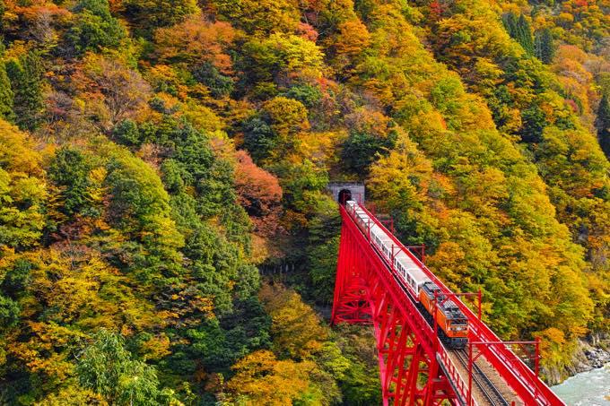 富山のおすすめ観光スポット60選