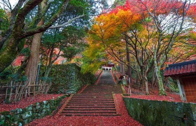 鰐淵寺(別所町)