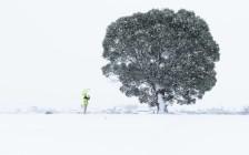 写真家「水田秀樹」世界一周から帰国後、新しい視点で撮影して回った8枚を公開