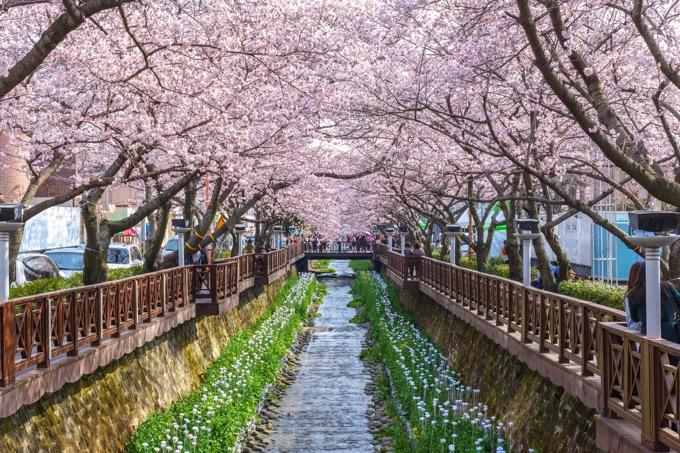 春を表す英語フレーズ