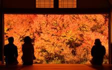 関西のオススメ絶景スポット20選