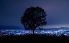 うっとりする関西のおすすめ夜景19選