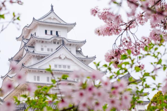 「国宝五城」あなたは言える?姫路城とあとの4つは?知らなきゃ日本人として恥ずかしい!