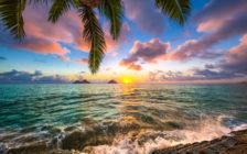 ハワイ旅行に必要な持ち物・あると便利なもの・必要ないものまとめ