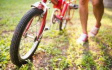 旅行好きにおすすめの折りたたみ自転車ブランド15選