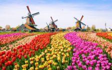 5月の海外旅行におすすめな国8選