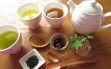 「日本の良さを世界へ!」ベトナムでカフェの立ち上げに関わる海外インターン募集