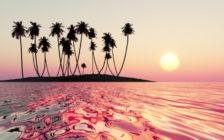 マウイ島のおすすめ観光スポット67選