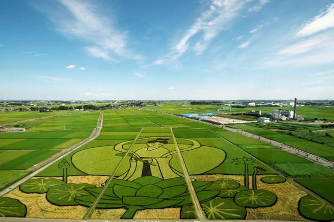 世界も絶賛!稲で絵を描く「田んぼアート」とは?