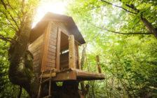 登ってみたい!世界に実在するツリーハウス10選