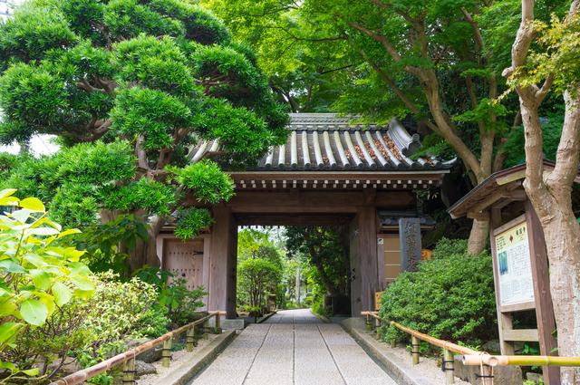 神奈川県の夏に行きたい観光スポット9選