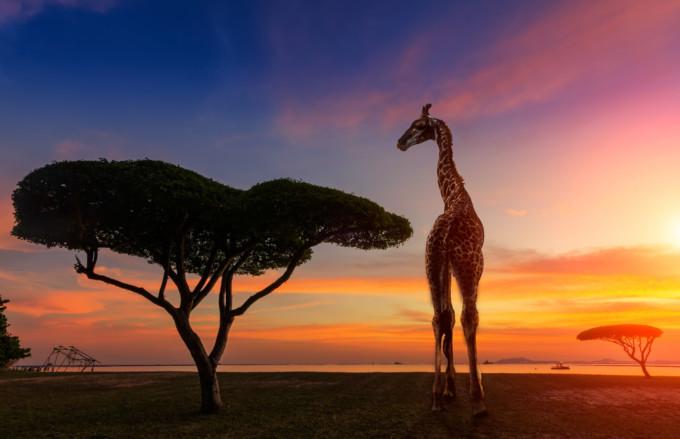多様な文化が魅力的!トーゴ共和国のおすすめ観光スポット7選