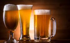 旅行好きにおすすめの世界のクラフトビール11選