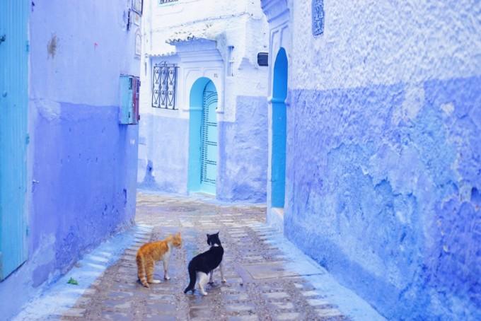 モロッコの青い街・シャウエン