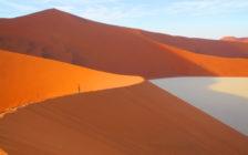 ナミブ砂漠だけじゃない!海もサファリも堪能できるナミビアの7つの魅力