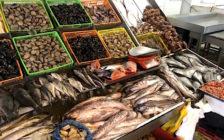 チリのビニャ・デル・マールは刺身も食べられるおすすめのビーチリゾート