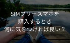 SIMフリースマホを購入するとき、何に気をつければ良い? | プロフェッショナルに聞いてみよう