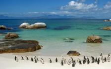 アフリカのおすすめ観光スポット15選