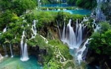 リラックスできる世界の緑色の絶景20選