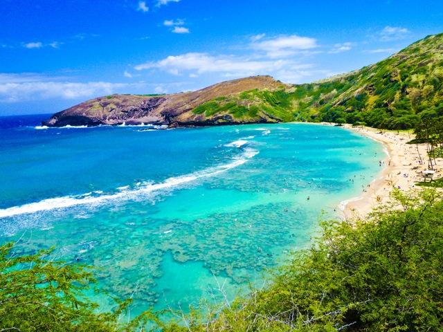 ハワイナイト