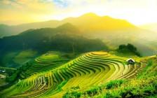 フィリピンの世界遺産バナウエの棚田が絶景だった