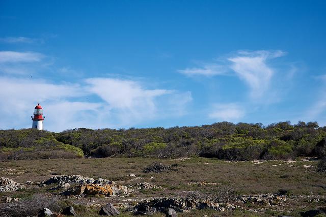 ロベン島の画像 p1_19