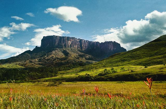 カナイマ国立公園の画像 p1_18