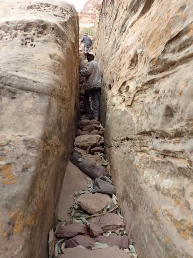 mariam path P2232131