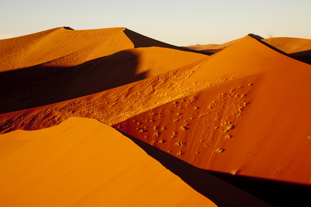 絵画の世界に入り込んだみたい…世界最古「ナミブ砂漠」の5つの魅力
