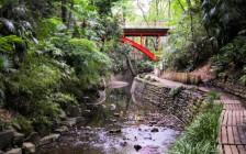 東京の大自然溢れる絶景スポット7選