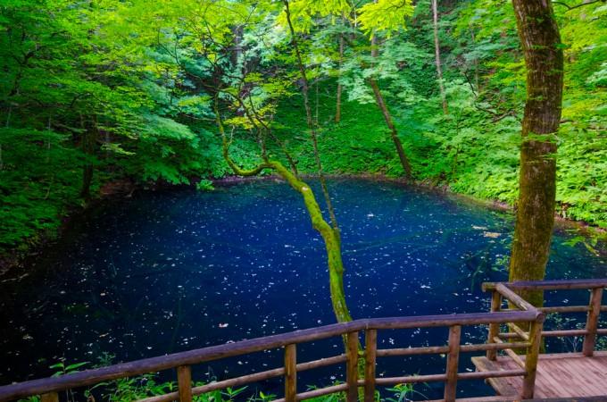 青森県の緑あふれる絶景13選