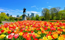 ボストンのおすすめ観光スポット14選