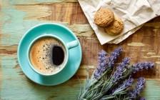 ベトナムの絶品コーヒー「コピルアク」実は動物のうんちから作られていた