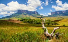 エンジェルフォールとやテーブルマウンテンがある「ベネズエラ」の世界遺産まとめ