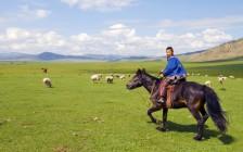 モンゴル旅行