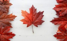 カナダ旅行でおすすめの有名観光スポット7選