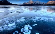 カナダの国立公園・国定史跡・国立海洋保護区、全218の入場料がタダに!2017年はカナダへGO!
