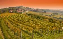 気がつけばイタリア!スロベニアにある分断された街「ノヴァ・ゴリツァ」