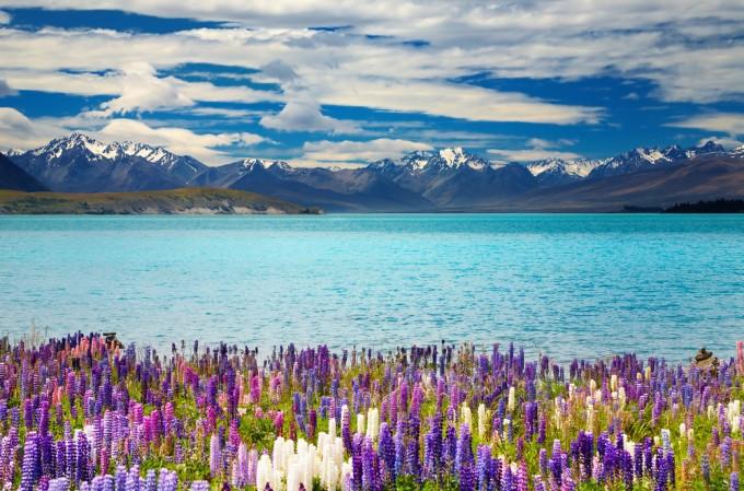 ニュージーランドの人気観光スポット33選