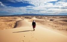 ゴビ砂漠を満喫する観光スポット5選