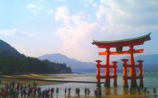 torii-667x500