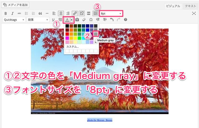 引用元の色と文字サイズを変更する